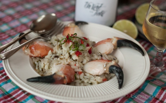 Crab and sea spice risotto (2 of 3)
